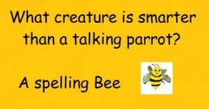 You must bee joking-What creature is smarter than a talking parrot-spelling bee