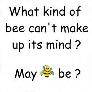 You must bee joking-What type of bee can't make up it's mind