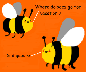 Where do bees go on vacation
