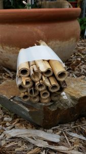 A simple Bug Hotel using bamboo in a cut up milk bottle